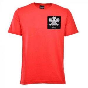 Wales Feathers 1905 Rugby Vintage T-Shirt